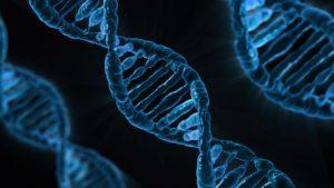 不倫遺伝子の画像